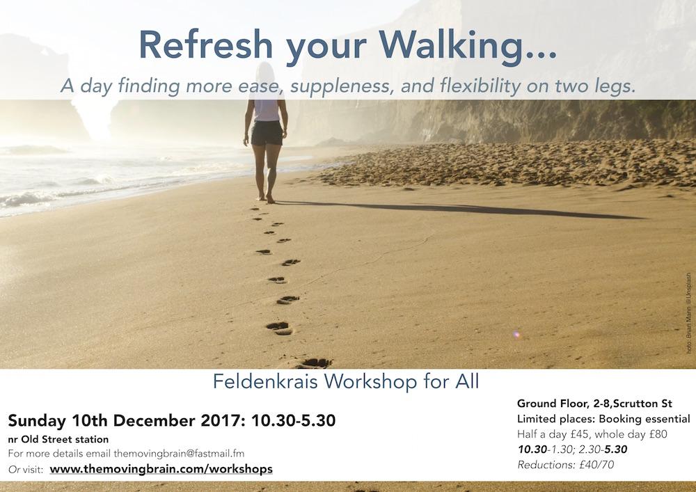walkingFlyer2